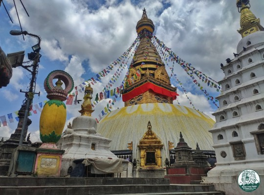 Culture and Nature Tour Nepal