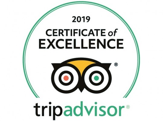 TripAdvisor Rating and Popularity