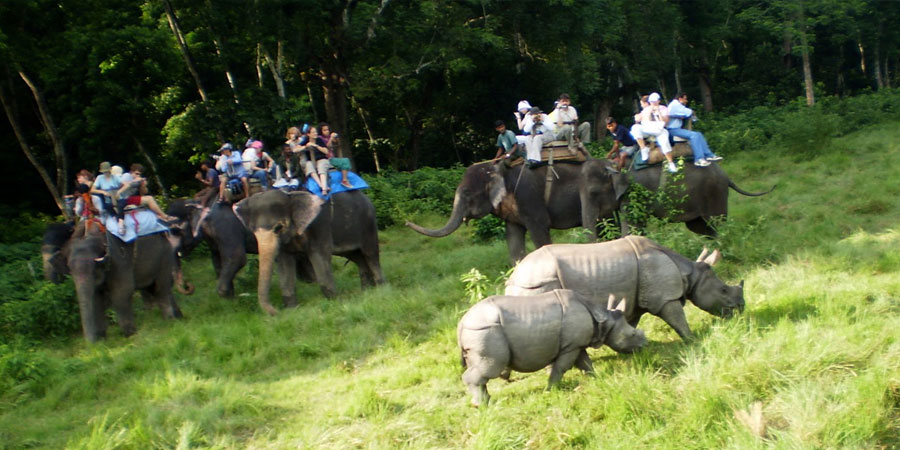 Chitwan National park, Best Trip for 2019