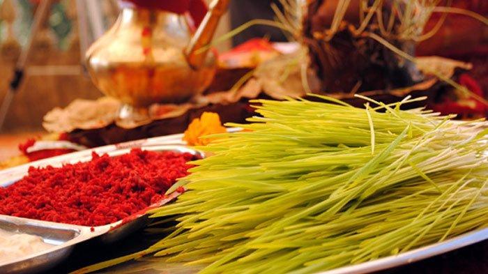 Dashain-tika-jamara