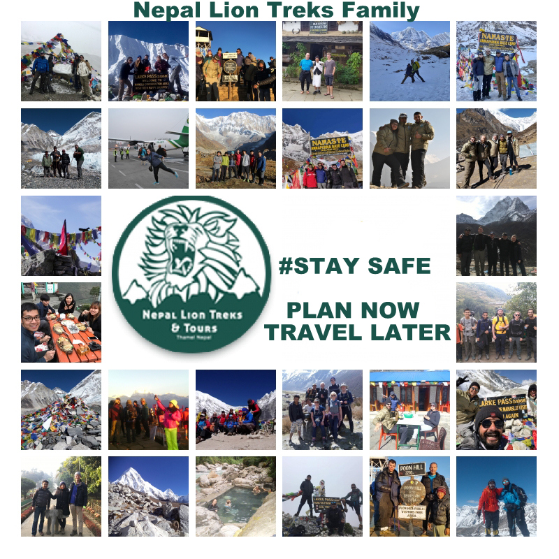 Plan Now Travel Later, COVID 19 UPDATES